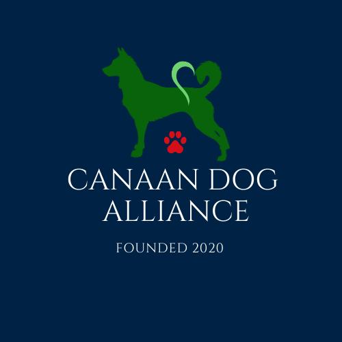 Canaan Dog Alliance